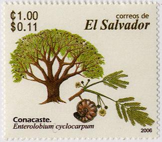 エルサルバドル共和国 |木材と国章、国旗のweb|木の情報発信基地