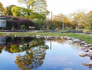 ヘルシンキのカイサニエミ植物園