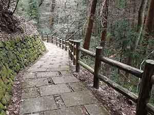 中川木材産業の間伐材利用の自然木フェンス