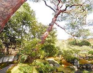 南禅寺-對龍山荘