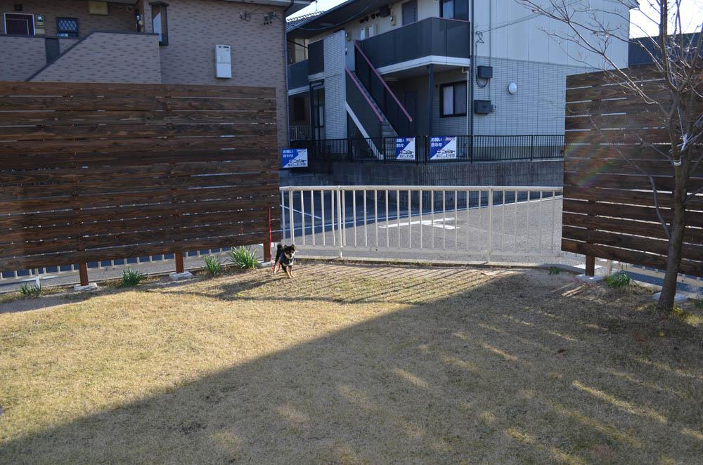 目隠しフェンス体験談-中川木材産業