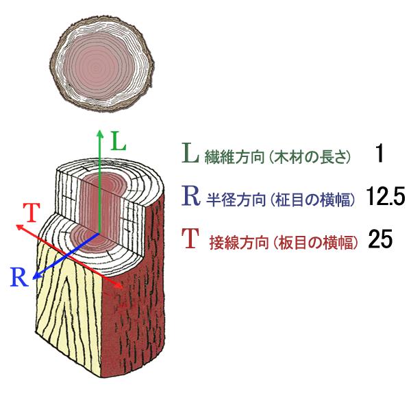 木材の収縮